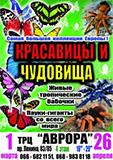 cisafisha_145691962263_1.jpg