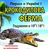 kopiya_1526757133_nikopol-mm.jpg