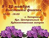 kopiya_vystavka-fialok25682.jpg