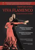 viva-flamenso-728x1024_-_kopiya.jpg