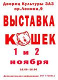 vystavka-koshek-favority_1460.jpg
