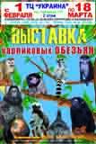 vystavka_obezyan_-_kopiya.jpg